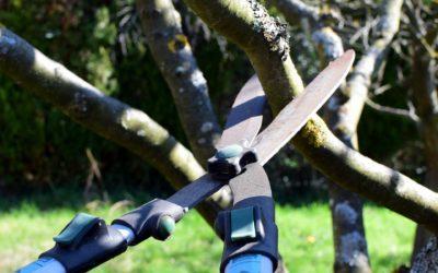 Les 3 meilleurs outils de coupe pour votre jardin