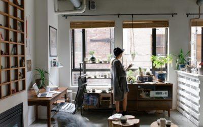 Qu'est-ce qu'un décorateur végétal ?
